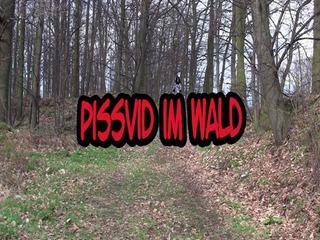 D83a738b in Pissvid im Wald